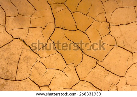 dry earth texture - stock photo