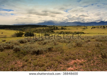 dry farmland pasture - stock photo
