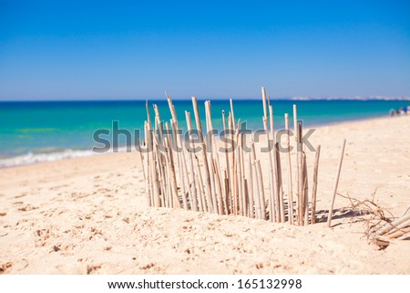 Dry fence of reeds on a deserted coast in Faro, Portugal - stock photo