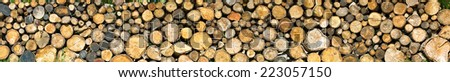 dry firewood laid in a heap for kindling the furnace - stock photo
