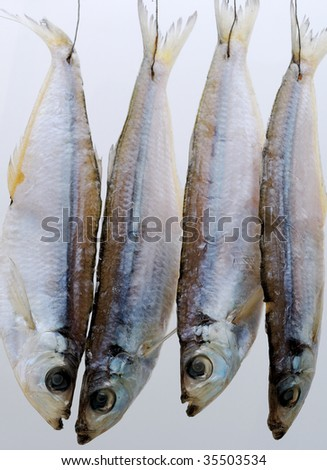 Dry fish on a white background - stock photo
