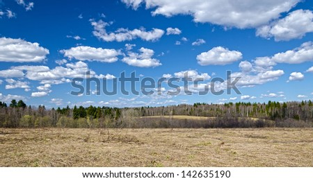 dry grass, forest, clods under blue sky - stock photo