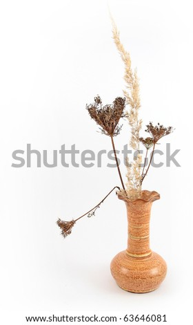 Dry grass in the vase - stock photo