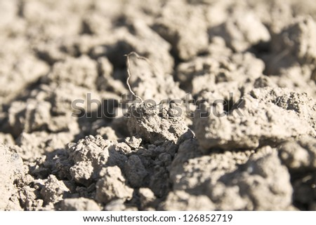 dry ground before rain closeup