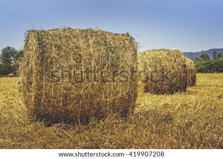 Dry hay and straw bales in the field in Transylvania, Romania. - stock photo