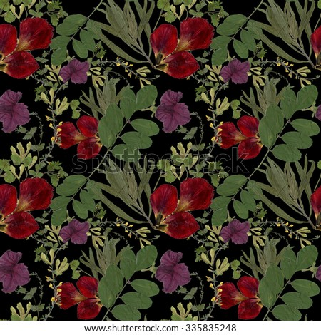 Dry herbarium plants seamless pattern on black background with flowers and leaves - stock photo