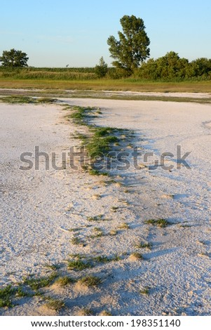 Dry lake bed at Neusiedler See, Austria.
