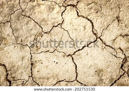 Dry land, background of cracked land surface - stock photo