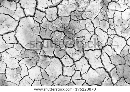 Dry land. Cracked ground background and texture. - stock photo