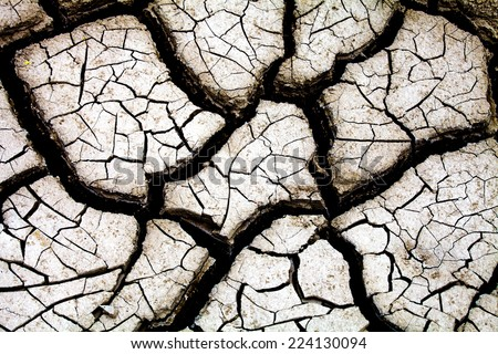 Dry land texture in desert - stock photo
