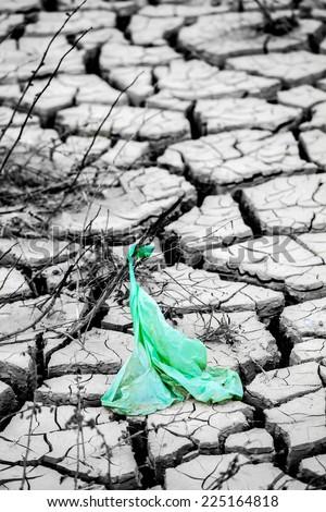 Dry land texture in desert - stock photo