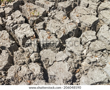 Dry land with dried leaves and twigs in the cracks. Large clumps of cracked dirt. Drought or global warming concept.   - stock photo