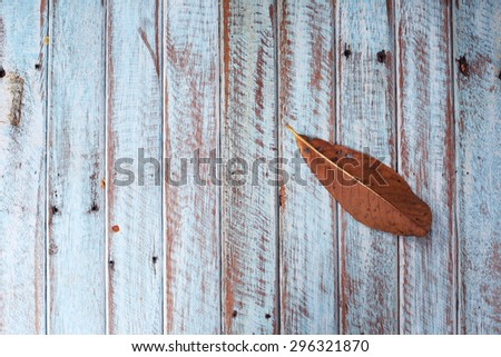 dry leaf on grunge wooden panel - stock photo