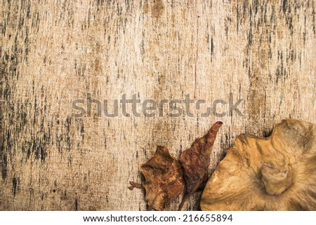Dry leaves on old wooden background