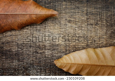 dry leaves on top and bottom on the old wooden background - stock photo