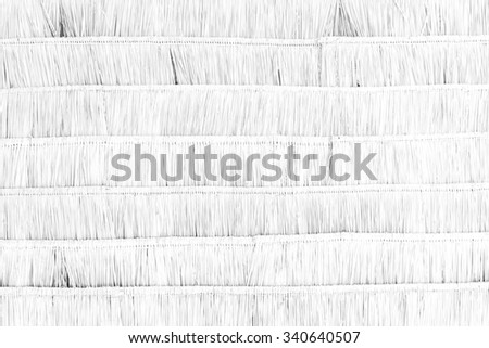 Dry leaves wall texture background surface white color