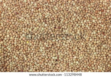 Dry lentils close up background - stock photo