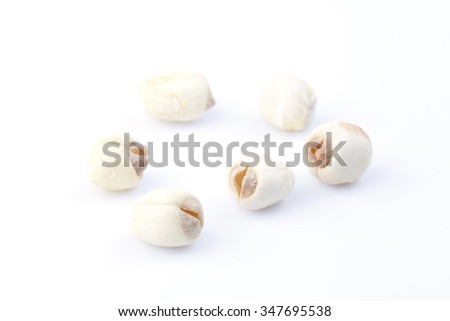 Dry lotus seeds on the white background