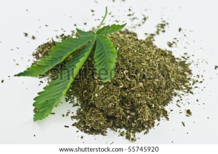 dry marijuana and green leaf - stock photo