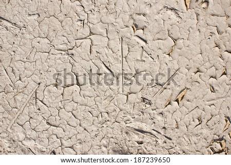 Dry mud ground texture. - stock photo