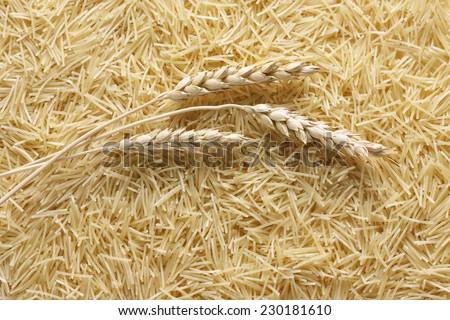Dry pasta vermicelli background  - stock photo