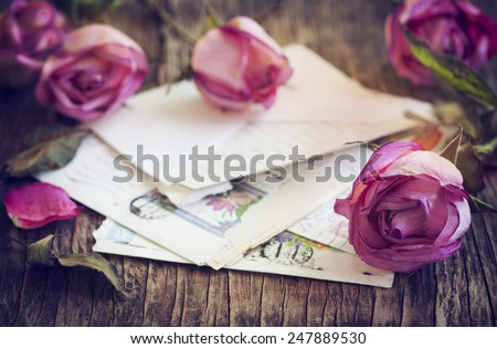 Dry Pink Roses and old Letter on Wooden Background - stock photo