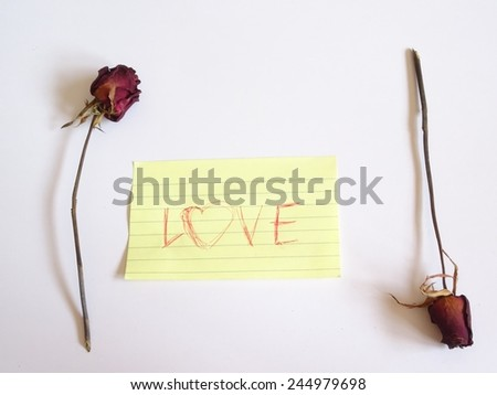 Dry red rose and love note isolate on background - stock photo