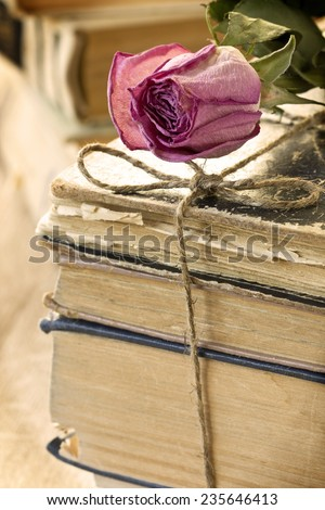 dry rose on the book
