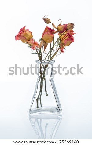 Dry roses bouquet in a transparent glass flask