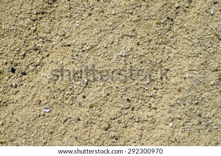 Dry sand beach with pebbles  on sunny day