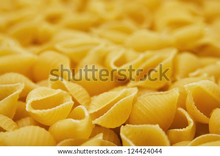 Dry shell pasta. Close-up shot, shot with a shallow depth of field.