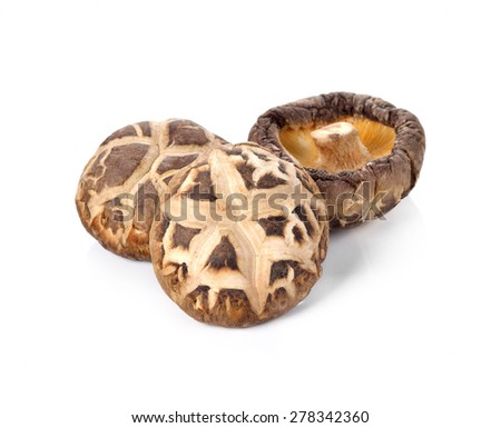 Dry Shiitake Mushroom isolated on white - stock photo