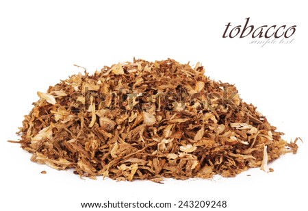 Dry smoking tobacco close-up - stock photo