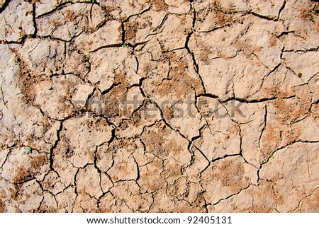 Dry soil and climate. - stock photo