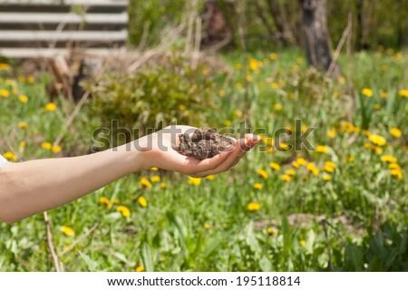 Dry soil in female hand - stock photo