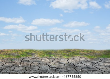 Dry soil with green moss and blue sky background