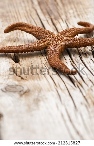 dry starfish on old wooden background