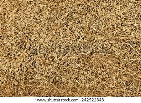 Dry straw texture or backround, nature, plants - stock photo