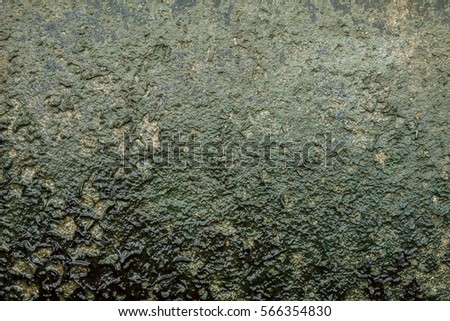 dry Taacrgngm texture/ green dirty water
