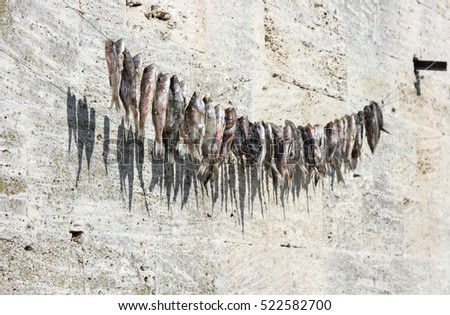 Dry the fish drying on a rope