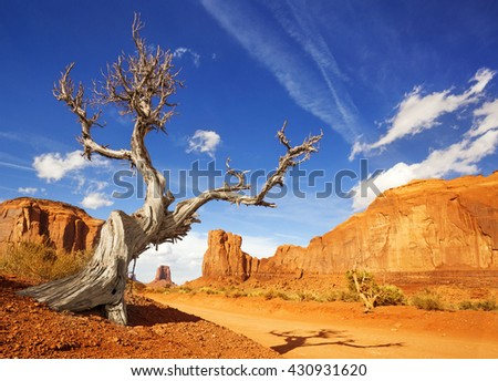 dry tree at the side of a dirt road in monument valley - stock photo