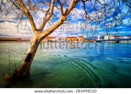 Dry tree protruding from the swollen river during terrible floods - stock photo