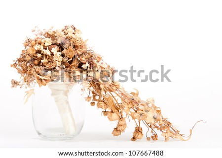 Dry wedding bouquet - stock photo