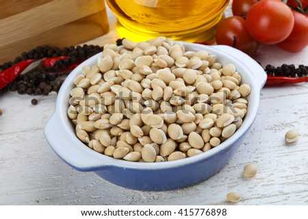 Dry white beans in the bowl ready for cooking - stock photo