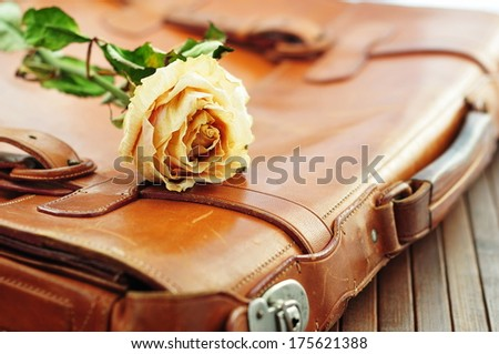 Dry yellow rose on old briefcase in vintage style - stock photo