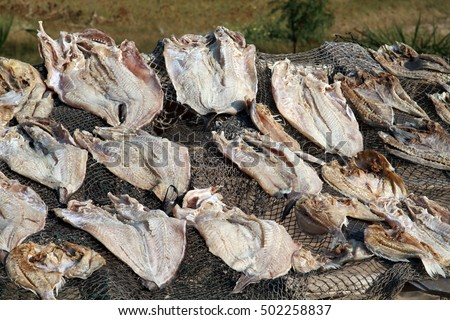 drying fish in a fisher village on Mosulu island, Angola