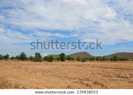 Dryness of countryside landscape with blue sky.