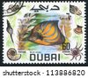 DUBAI - CIRCA 1969: stamp printed by Dubai, shows fish, Blue angel, circa 1969 - stock photo