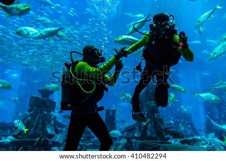DUBAI, UAE - DECEMBER 5: Large aquarium in Hotel Atlantis in Dubai, UAE. December 5, 2015 in Dubai, United Arab Emirates - stock photo