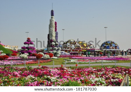 DUBAI, UAE - FEBRUARY 8: Dubai Miracle Garden in the UAE, as seen on February 8, 2014. It has over 45 million flowers. - stock photo